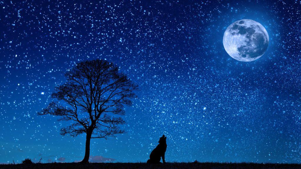 čínsky lunárny kalendár.